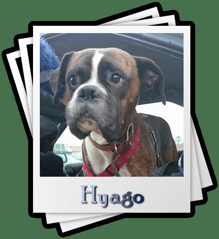 Hyago