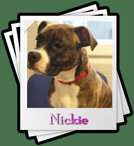 Nickie