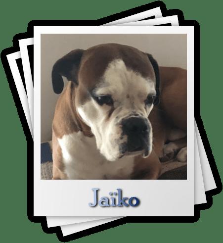 Jaïko