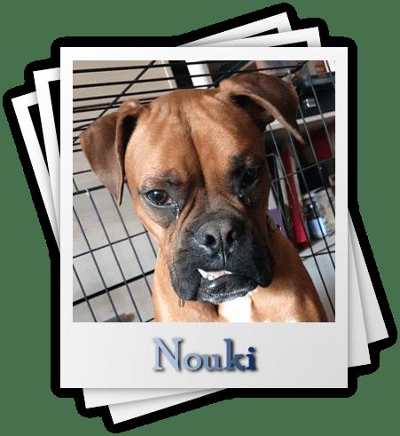 Nouki