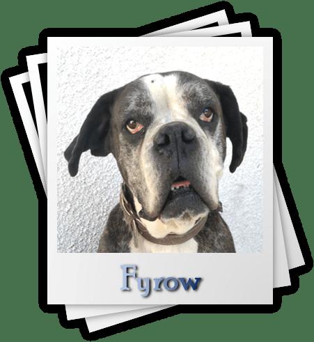 Fyrow